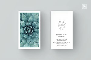 GEOLUNA2 Business Card Template