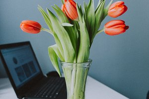 Tulips on a desk with a computer