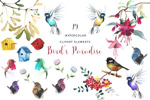 Watercolor Birds' Paradise Clipart