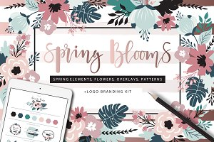 Spring Blooms clip art +branding kit