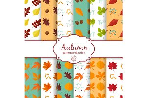 Autumn patterns collection