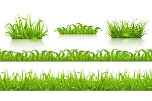Spring grass seamless pattern,vector