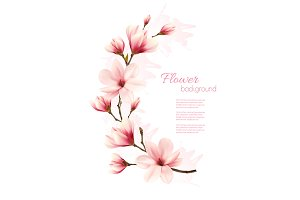 Beautiful pink magnolia background