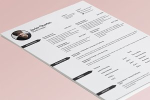 4 Page Professional Resume Template