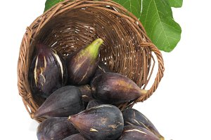 Fig fruits.