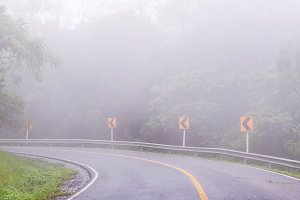Foggy road in the morning