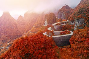 winding and curves road