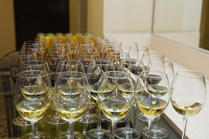 Glasses of wine - catering at press-conference