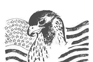 eagle and American flag, sketch