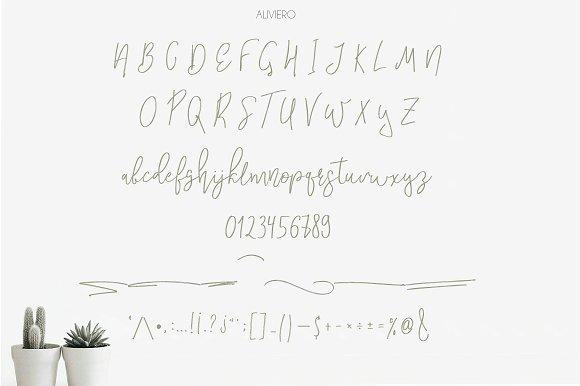 Aliviero Script in Script Fonts - product preview 4