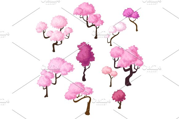 Set of isometric sakura trees, bluming cherry