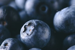 Fresh  blueberries, macro