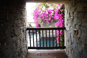 Balcony with pool and flowers