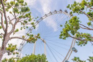 ferris wheel for Scenic ride