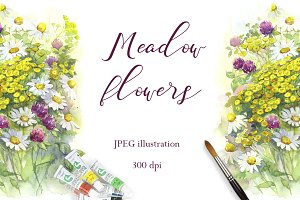 SALE! Meadow Flowers Watercolor