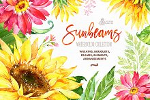 Sunbeams. Floral Collection