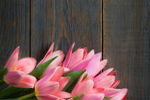Bunch of Pink Tulips on Wooden Dark Background
