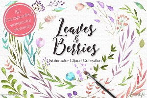Leaves & Berries Watercolor Cliparts