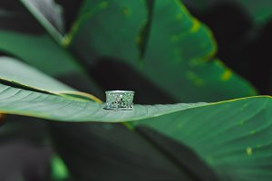 tropical ring
