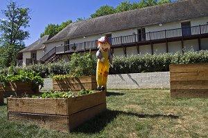 Scarecrow.