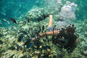 Diver man play