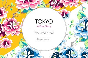 Tokyo Print Story
