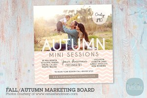 IW007 Fall Marketing Board