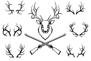 Set of antlers with trophy and guns