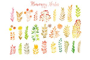 Vector watercolor leaf set