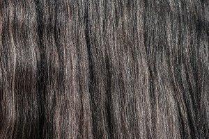 Horse gray long glitter mane