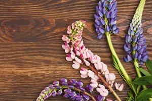 Violet lupinus on the wooden board