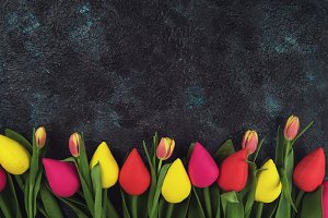 Handmade and real tulips on darken