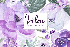 Lilac Soft purple watercolor clipart