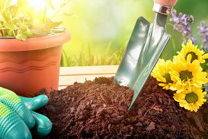 Tools for plants and flowers outdoor