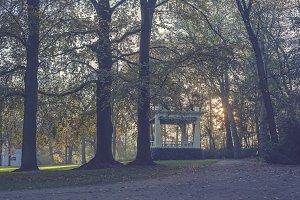 Fall park with setting sun