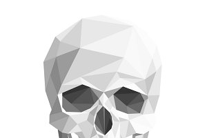 Colorful geometric low poly skull