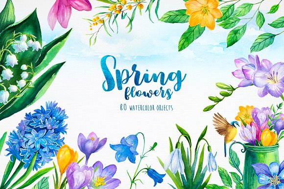 Spring Flowers Watercolor Illustrations Creative Market