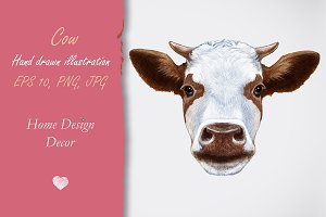 Cow / Decor
