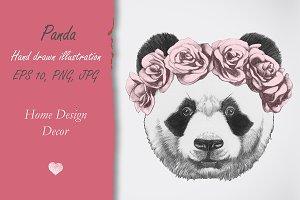 Panda / Decor