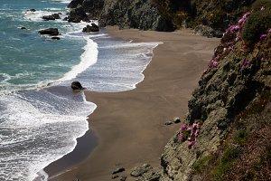 California Coast 49
