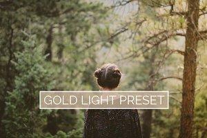 10 Gold Light Lightroom Presets