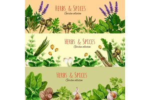 Herbs, spices and condiments cartoon banner set