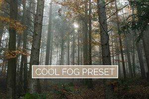 10 Cool Fog Lightroom Presets