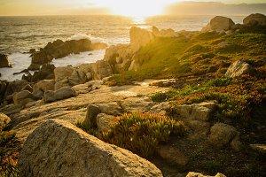 California Rocky Coast at Sunset
