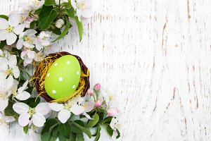 Nest with easter egg