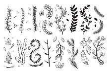 Hand drawn decorative branches with leaves and flowers doodle floral vector elements set