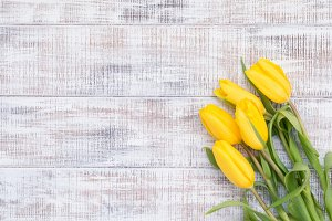 Yellow tulips on vintage background