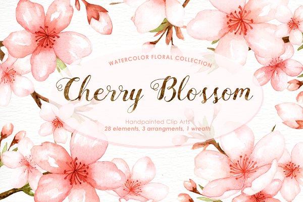 Cherry Blossom Watercolor Clip Art