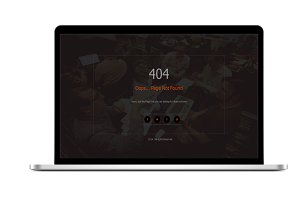 Responsive 404 Template
