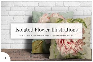 5x Isolated Flower Illustration (01)